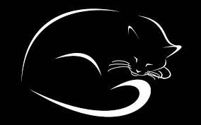 sombra gato