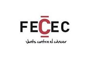 FECEC300x200